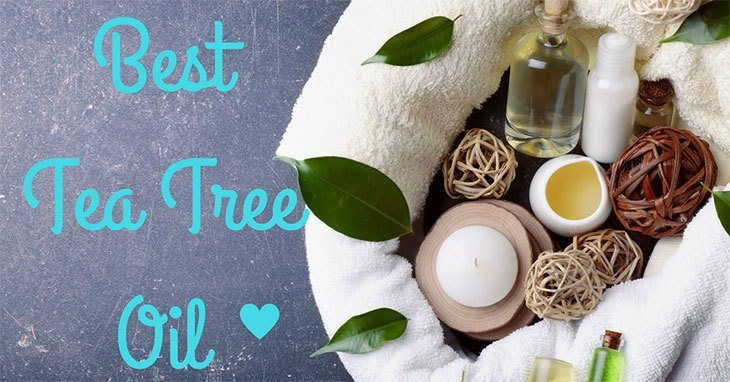 What Is the Best Tea Tree Oils? The Top 5 You Need to Try