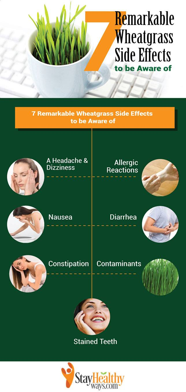 wheatgrass side effects infographic