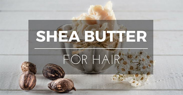 shea butter for hair