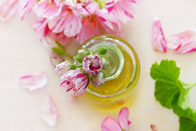 Geranium Essential Oils for Poison Ivy